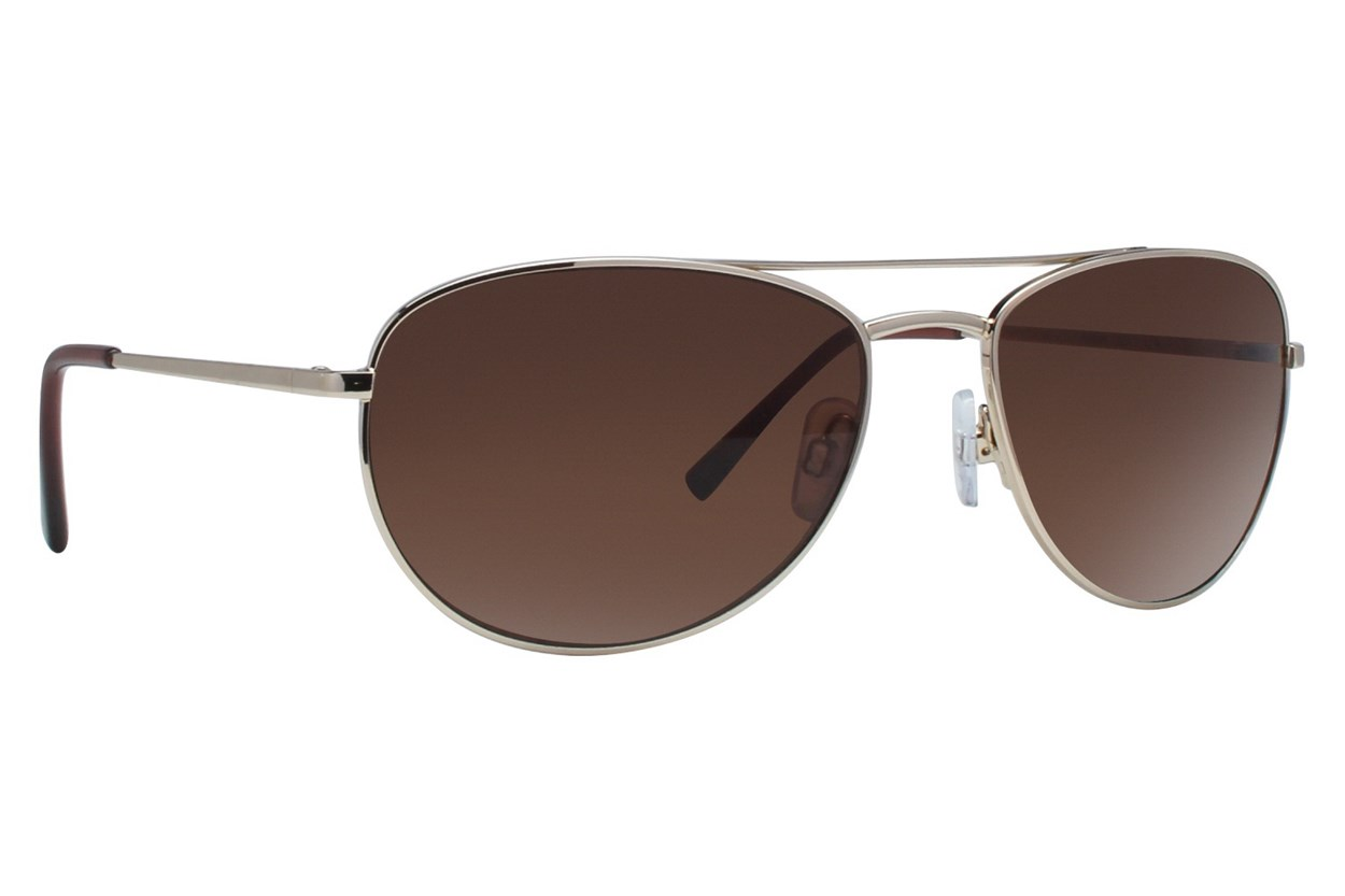 DNA 2005 Sunglasses - Gold