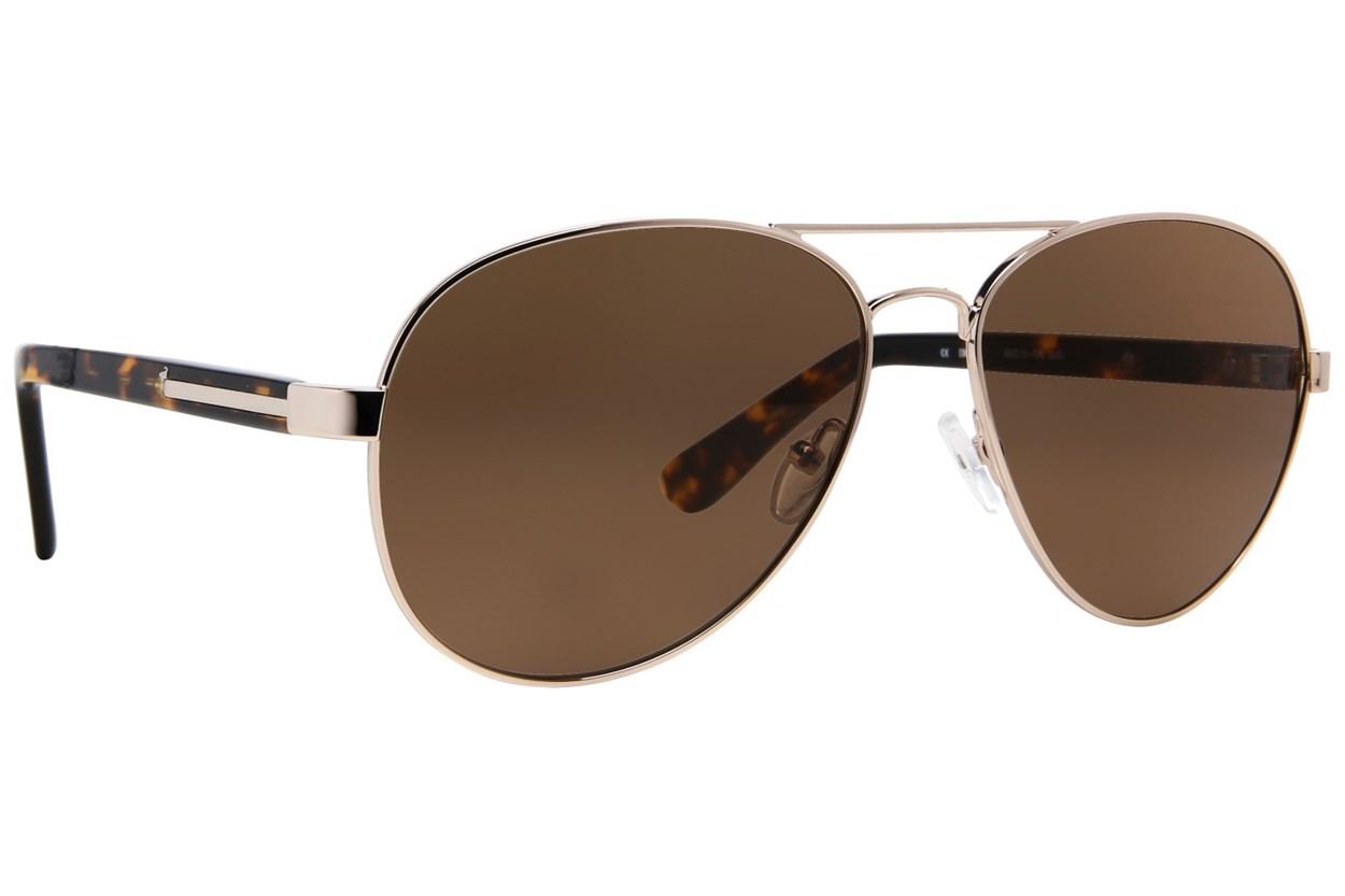Moda 110 Sunglasses - Gold